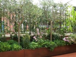 Vannacci, giardini e piante , i giardini e le terrazze