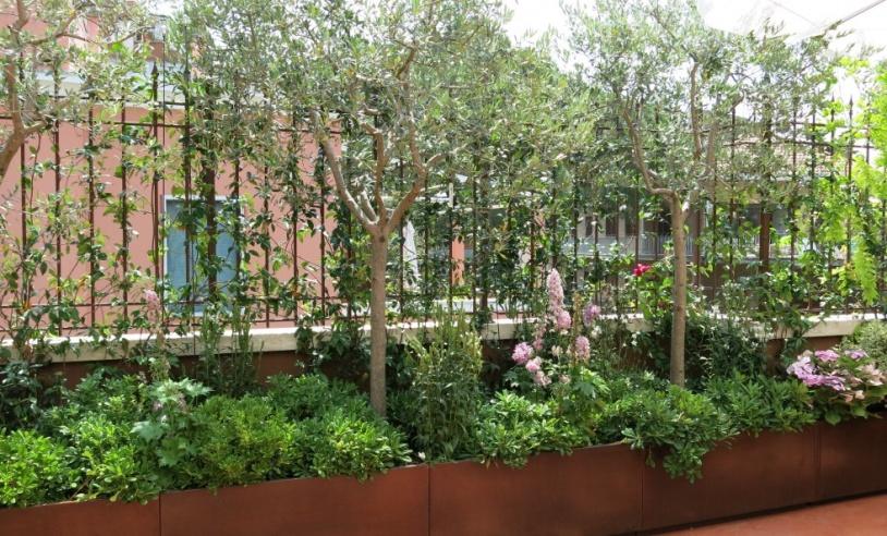 Vannacci giardini e piante i giardini e le terrazze for Giardini e terrazzi